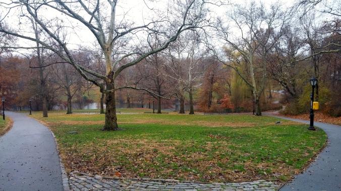 Central Park on a crisp morning