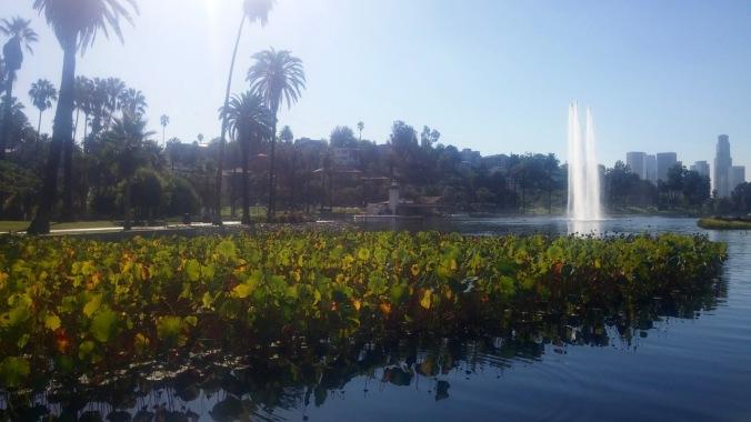 Such a great yoga spot. Echo Park, LA.